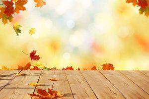 Anteprima d'autunno